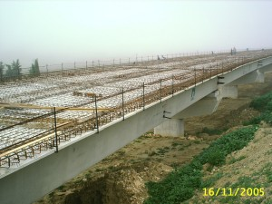 SS655 Bradanica - 2005